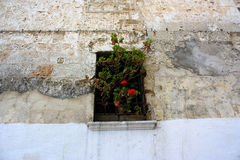 Window decorated with flowers. A wall of a building with a small window decorated with flowers in Bari, Italy Royalty Free Stock Image
