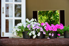 Window decorated with fresh flowers Royalty Free Stock Images