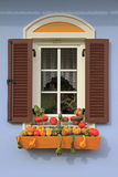 Window decorated with little pumpkins Stock Photo