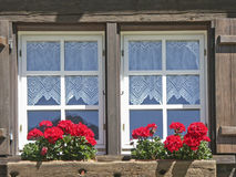 Window decoration Royalty Free Stock Photos