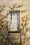 Window in Downing College Royalty Free Stock Photos