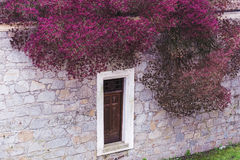 Window in an dwelling stone wall and tree with red flowers Royalty Free Stock Photo