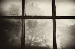 Window, early morning. Looking out of a window in early morning through a patina of drops of condensation. Silhouette of a tree is visible. Sepia-grunge effect Royalty Free Stock Images