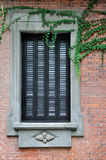 Window with exquisite engrave and vine plant. On aged architecture made by red brick, shown as traditional and fine architecture style and element of the Royalty Free Stock Photography