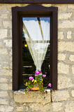 Window with a  flower Stock Photography
