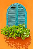 Window and flower. Blue window and orange house with nice decoration Stock Images