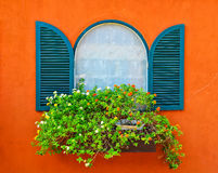 Window and flower. A couple of green windows at orange house Royalty Free Stock Photos