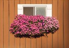 Window Flower Basket Stock Photo