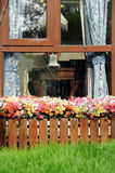 Window with a flower-bed Stock Photos