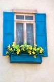Window with flower box. Flowers in Window Box. Classical style Royalty Free Stock Images