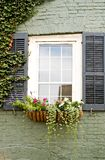 Window Flower Box. Window box with flowers on the side of an old brick home with ivy Stock Photo