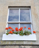 Window Flower Box. Detail of a Sash Window and Flower Box Stock Images