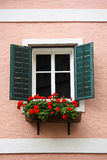 Window and flower box. Beautiful window with flower box and shutters Stock Photos