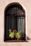 Window and flower box. In sun light Royalty Free Stock Image
