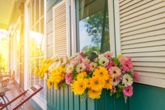 Window with flower box and shutters at home.  Stock Photo