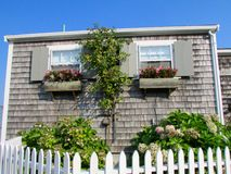 Window flower box on Nantucket. White Picket and flower Royalty Free Stock Images
