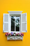 Window and flower box. On yellow wall Stock Photos