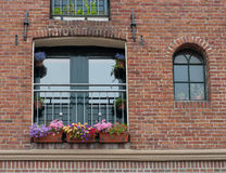 Window with flower boxes Stock Photos
