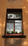 Window flower boxes on sill in old house Stock Photo