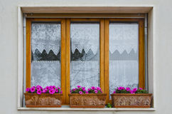 Window with Flower Boxes in Vinci, Italy. A modern window with flower boxes planted with pink petunias make a colorful splash in the small town of Vinci, Italy royalty free stock photos
