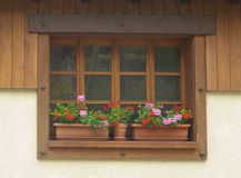 Window with flower boxex in France Stock Image