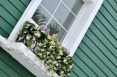 Window with flower of colored architecture. Green building and decorated window with flower in detail and part, shown beautiful living environment and color Royalty Free Stock Photo