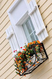 Window with flower of colored architecture. Light pink color building and white decorated window with flower in detail and part, shown beautiful living Stock Photo
