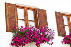 Window with flower decoration Royalty Free Stock Images