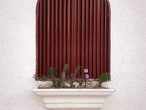 Window with flower pot and cactus royalty free stock photos