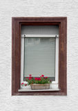 Window and flower pot Stock Photos