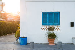 Window and flower pot. House facade. Blue window and flower pot. House facade royalty free stock photos
