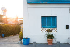 Window and flower pot. House facade. Blue window and flower pot. House facade royalty free stock photography