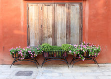 Window and flower pot Royalty Free Stock Photo