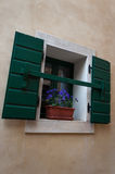 Window with flower and shutters. In Groznjan, Istria, Croatia Stock Photos