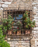 Window with flower vases Royalty Free Stock Images