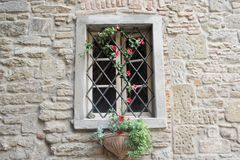 Window with flower vine stock image