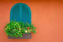 window and flowerpot Stock Images