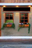Window and flowerpot Stock Image