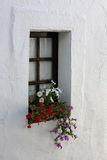 Window with flowers. Old window with flowers Stock Photo