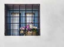 Window with Flowers. Image of a Window with some flowers, taken in a Mediterraneaun town Stock Photography