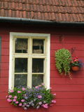 Window flowers. Window on a Lithuanian house with flowers Stock Photography