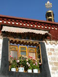 Window with flowers. A window with flowers of a temple in Tibet Stock Image