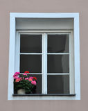 Window and flowers Royalty Free Stock Photography