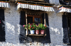 The window with flowers Stock Images