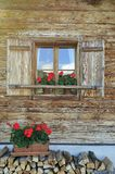 Window & Flowers Stock Image