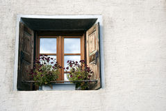 Window with flowers Stock Photography