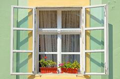 The window with flowers Royalty Free Stock Photo