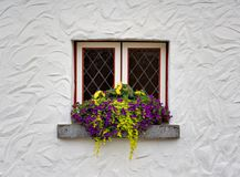 Window and Flowers Royalty Free Stock Image