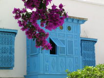 Window with flowers. Part of building in Sidi Bou Said (Tunisia Royalty Free Stock Images