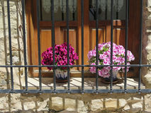 Window with flowers. Flowers behind Wrought Iron Grill or bars on Window in Jaen, Andalusia Stock Images